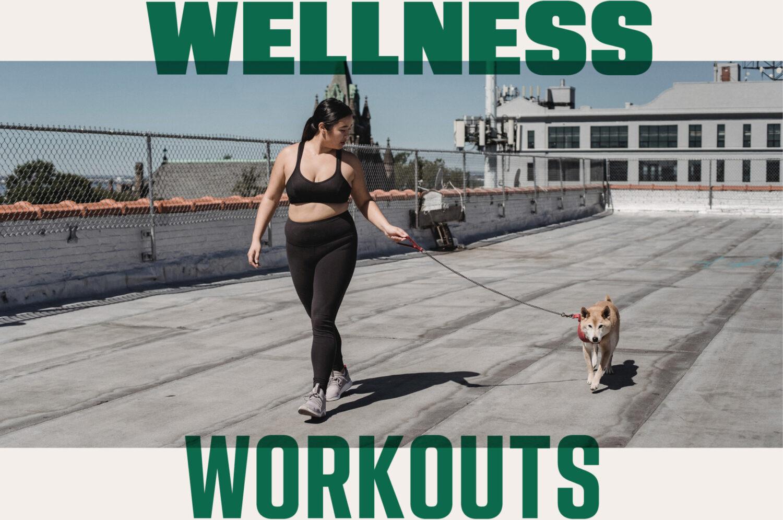 Amplify wellness workouts